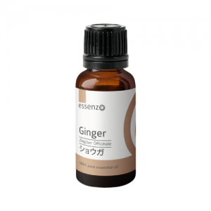 Ginger Essential Oil – 20mL